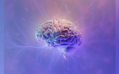 Neurowissenschaft trifft Spiritualität